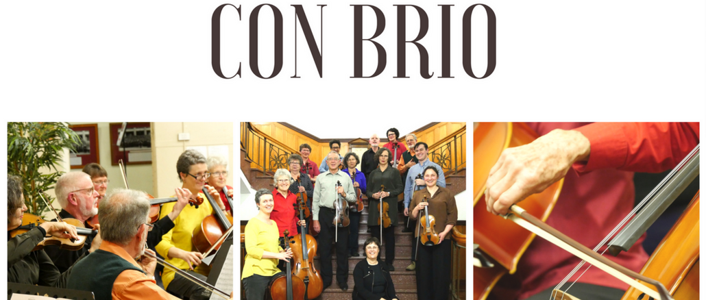Con Brio Needs String Players