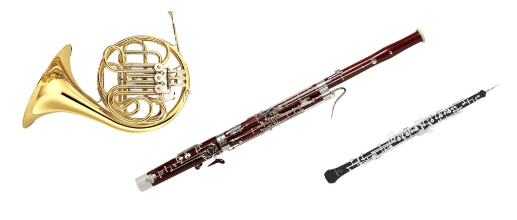 Endangered Instruments