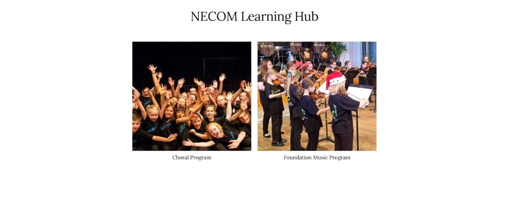 NECOM's New Online Learning Hub